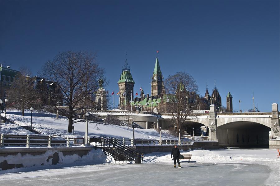 Parliament Skater